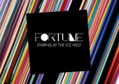 Fortune – Staring at the Ice Melt