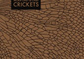Moka Only And Chief – Crickets