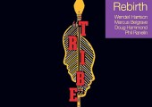 Tribe – Rebirth