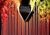 Vitalic – Flashmob