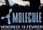 Triple concert le 13 Février – Molecule – Filastine – Galaktyk Kowboy