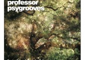 Professor Psygrooves – Foreign Pulses and Borderline Dubs