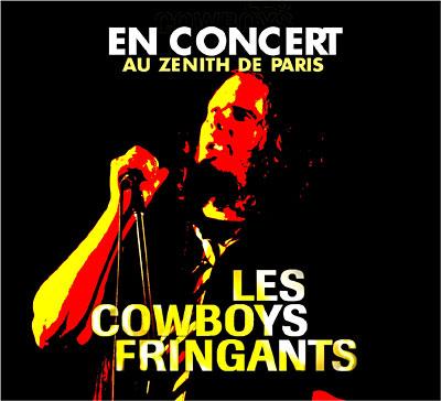 http://www.adnsound.com/wp-content/uploads/les-cowboys-fringants-en-concert-au-zenith-de-Paris.jpg