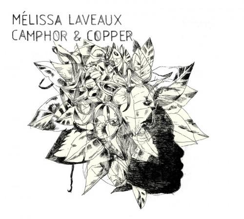 melissalaveaux-camphorandcopper
