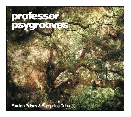 professorpsygrooves-foreignpulsesandborderlinedubs